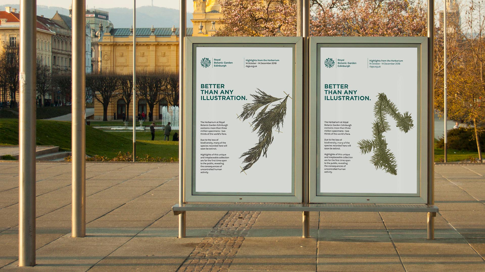 Highlights from the Herbarium Exhibition Posters